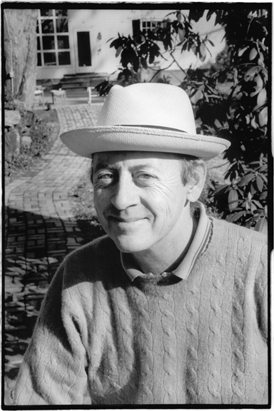 billy collins a great american poet essay